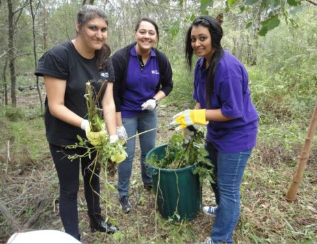 Youth Cleaning up at SYA's Green Action Day